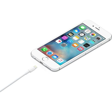 Oryginalny kabel Apple ME291ZM/A Lightning 0,5m - iPhone 5 / 5S / 5SE / 6 / 6S / 6 Plus / 6S Plus / iPad Air / Air 2 / Mini 4