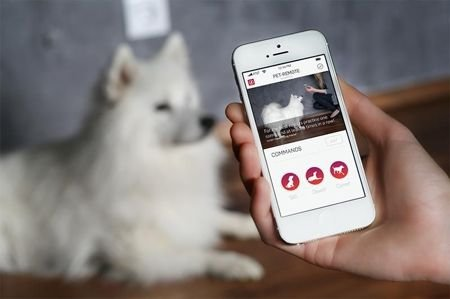 Pilot Tractive Pet-Remote do tresury zwierząt przy pomocy smartfona (iOS/Android/Windows Phone)